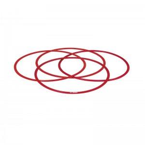 set cercuri